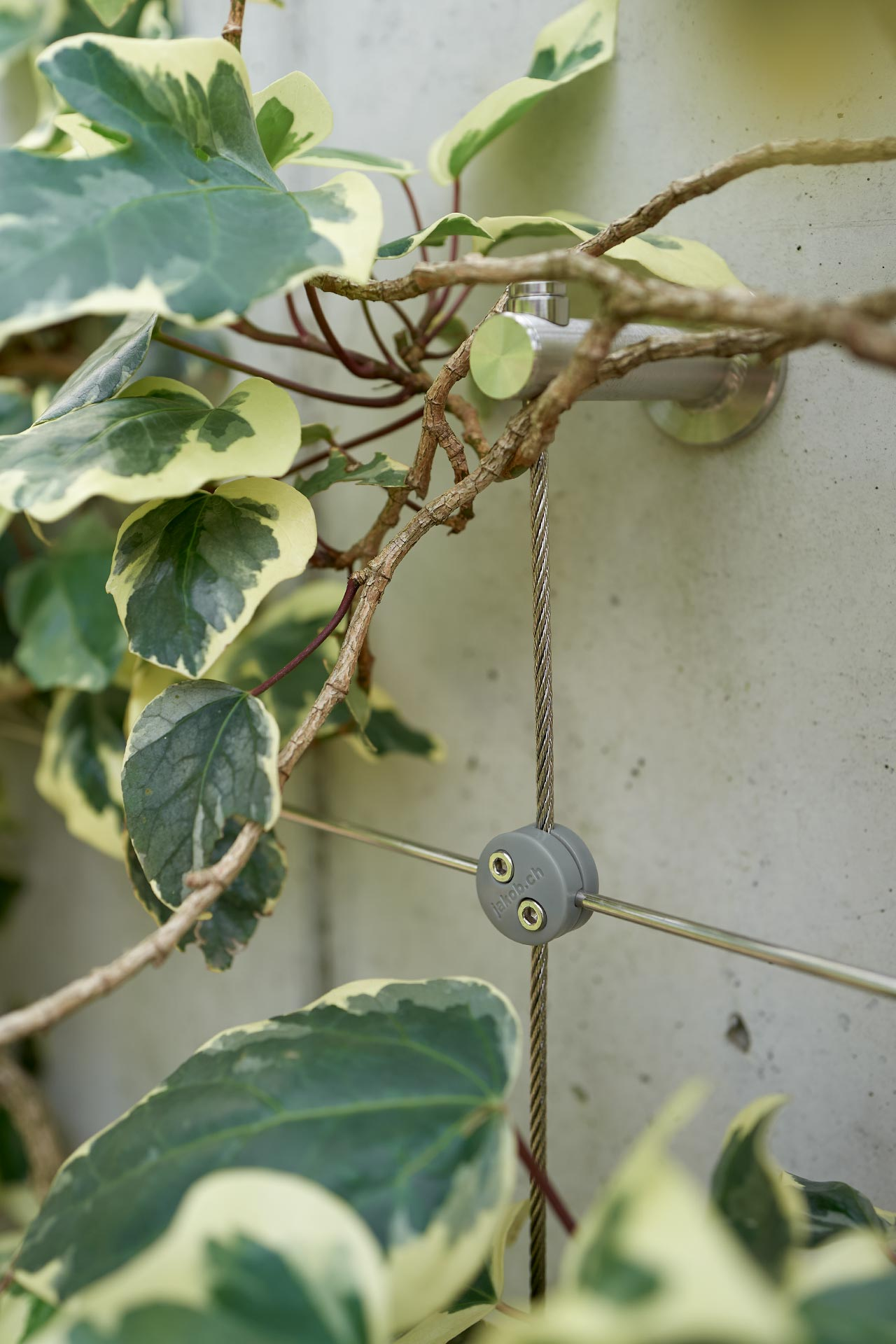 detail of trellis GreenKit with plants