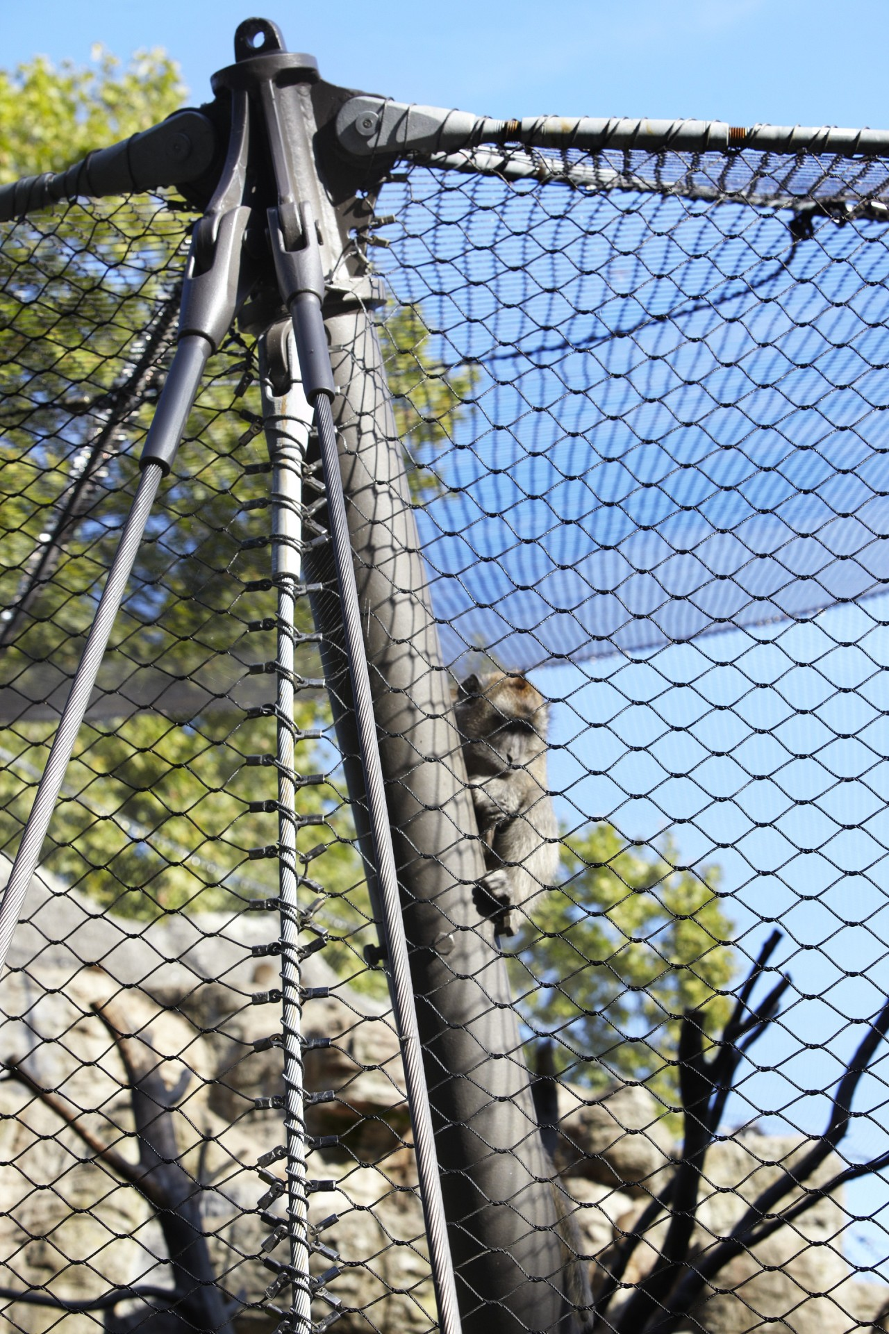 ropes, mesh and poles of an animal enclosure