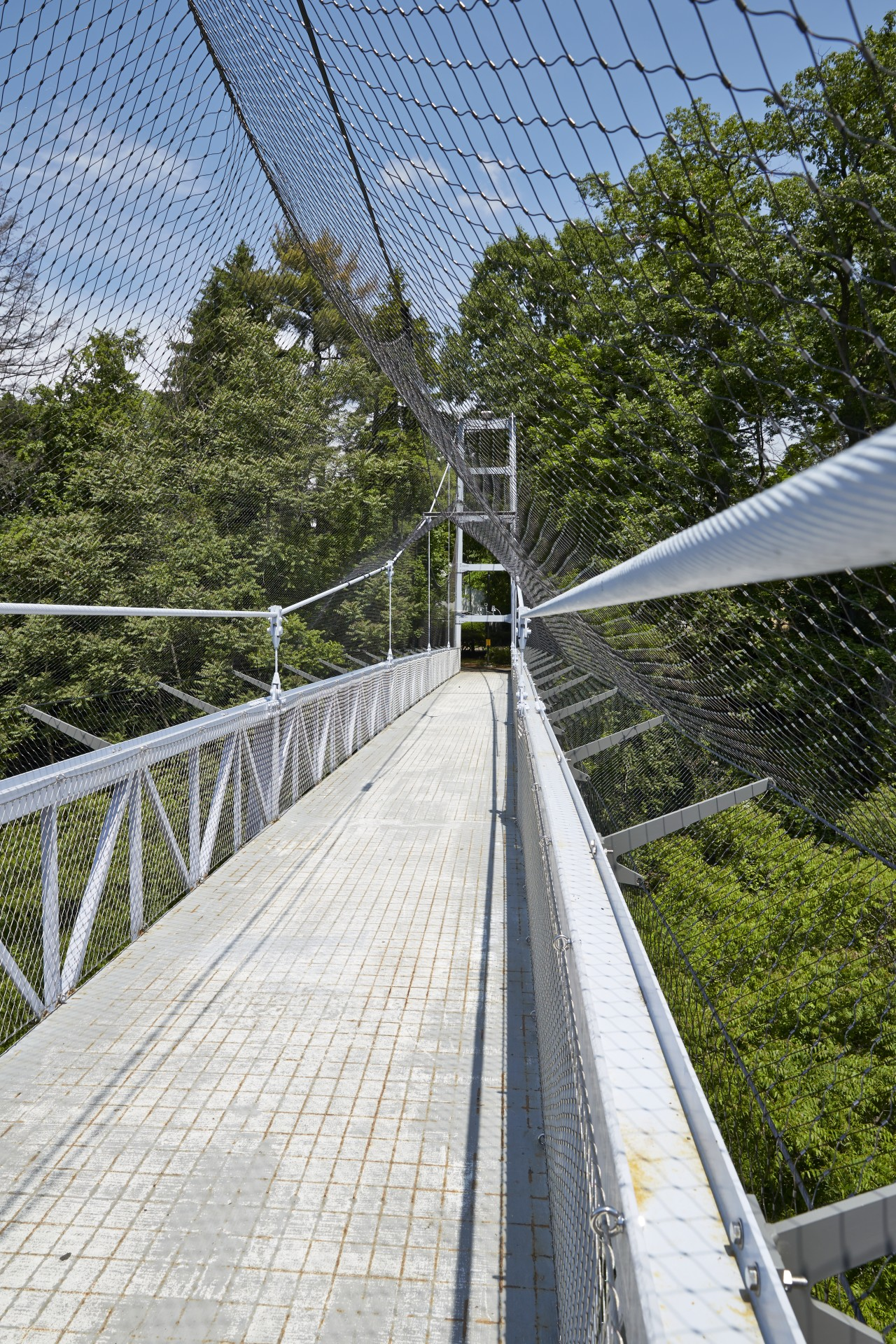high bridge with safety net