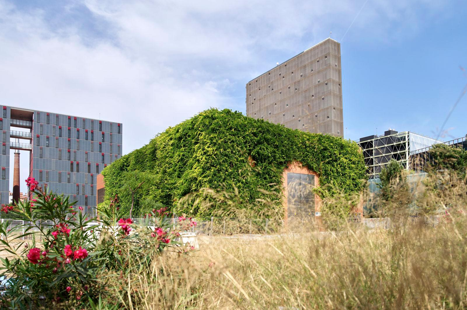 A building with a facade greening by Jakob Rope Systems in Barcelona