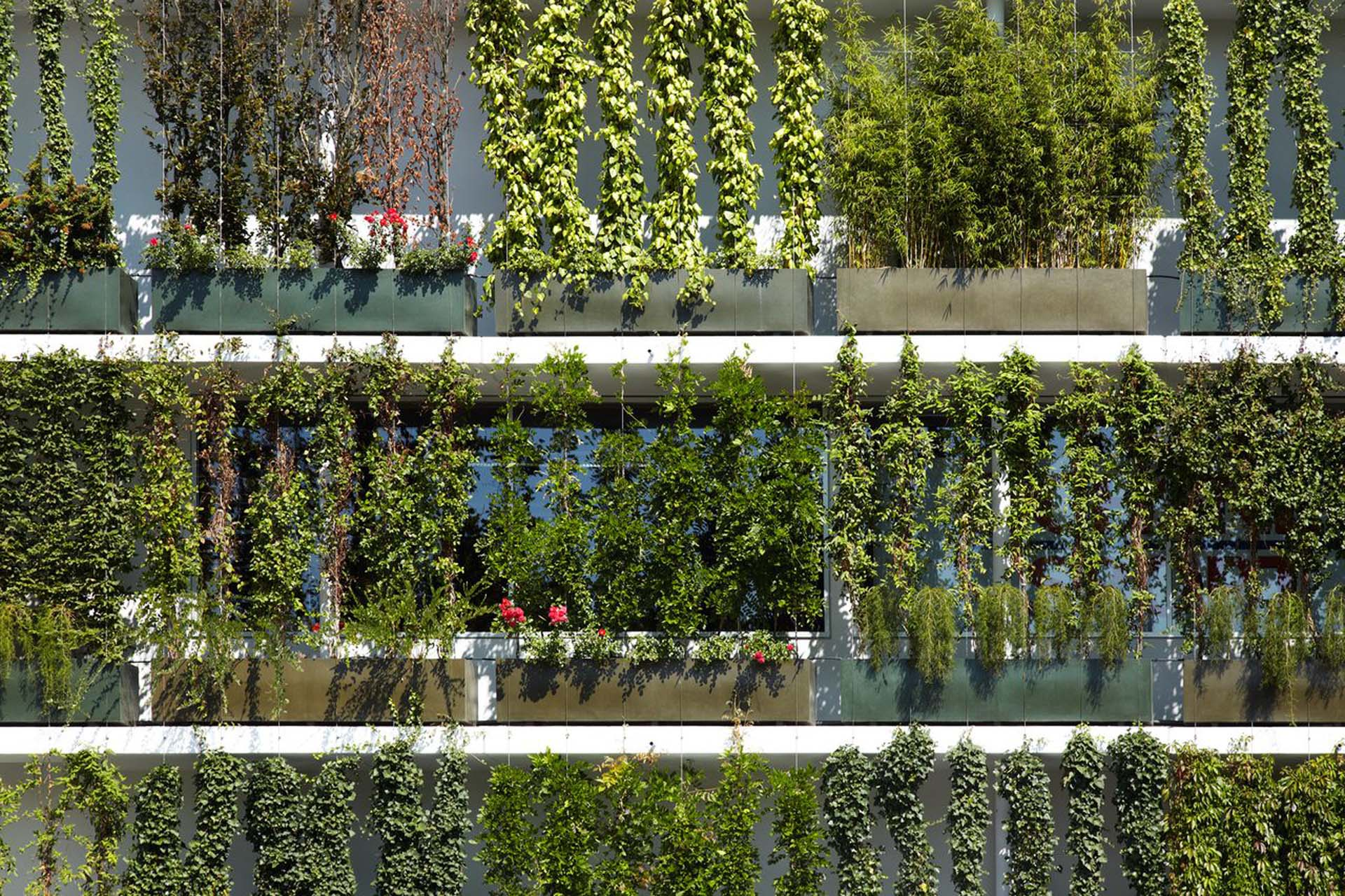 Plant bassins for ground-based facade greening by Jakob Rope Systems