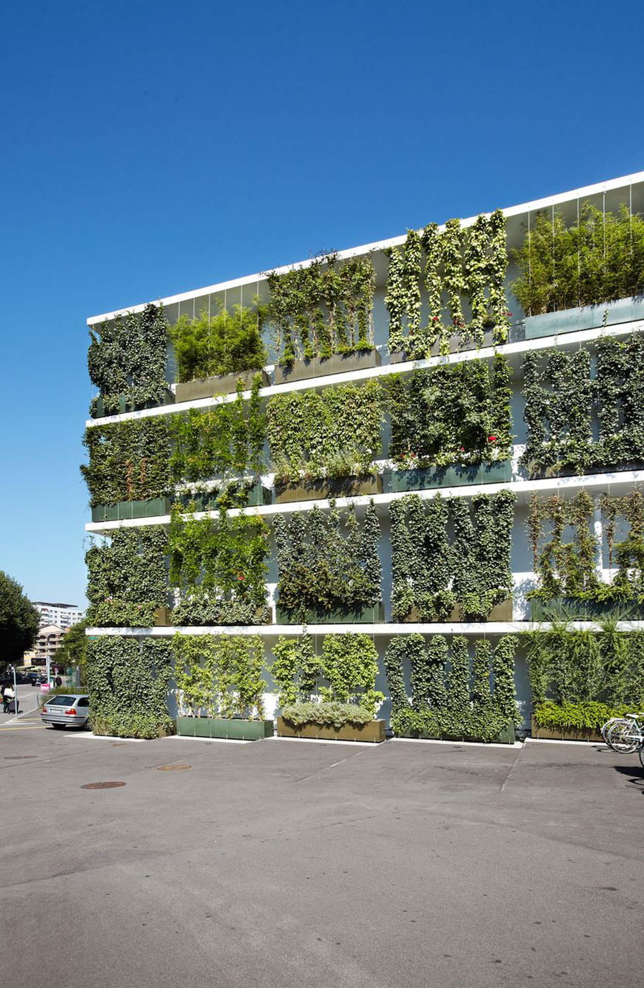 Green wall with steel cables by Jakob Rope Systems