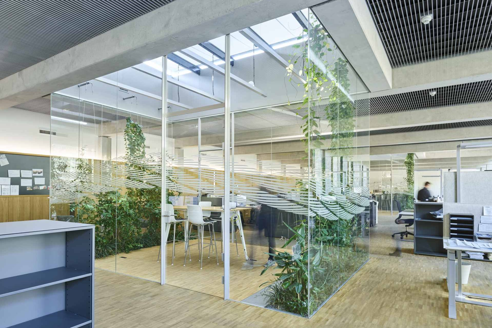 Interior of the new Jakob office with a co-working space and indoor greening