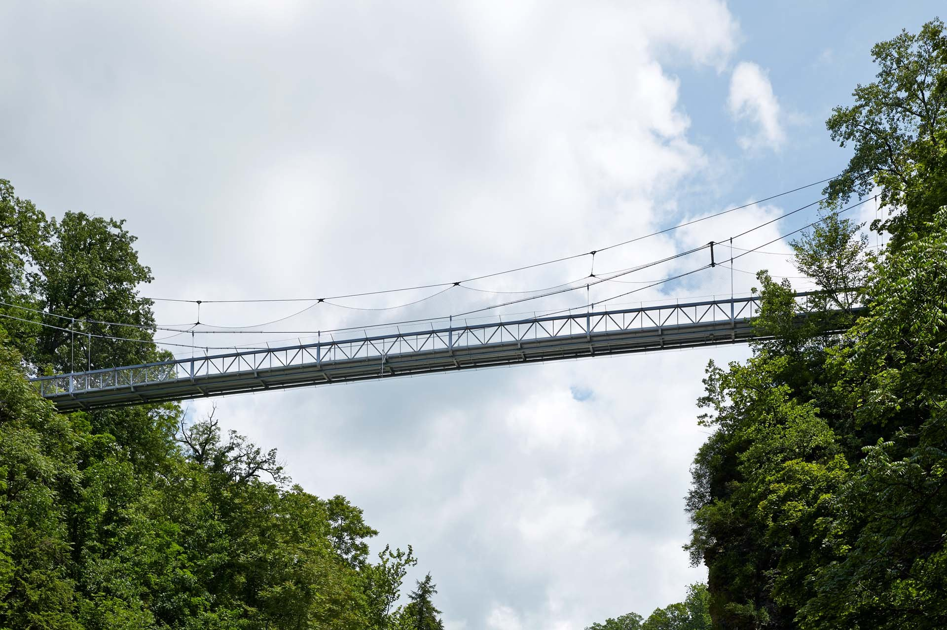 A bridge on the Cornell University Campus with a vertical safety net